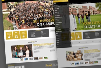 Barnes Agency Work Example - West Virginia State University Website Design
