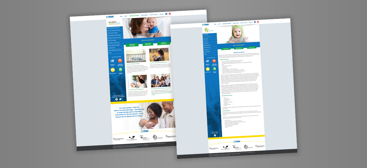 Barnes Agency Work Example - TEAM for West Virginia Children Website Interior