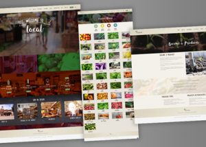 Barnes Agency Work Example - Wild Ramp Website Featured Image